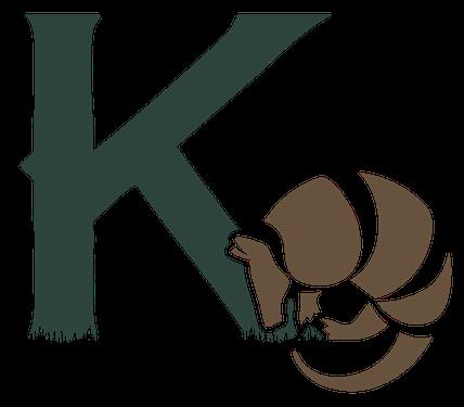 K-CAP2017